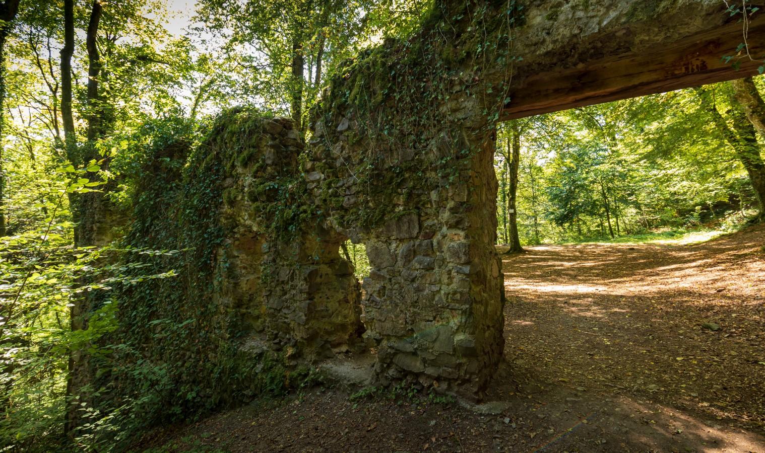 Burg Wiesneck bei Buchenbach