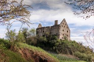 Ruine Schwendi-Schloss in Burkheim