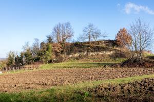 Burg Eichstetten 01