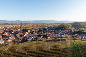 Burg Eichstetten 04