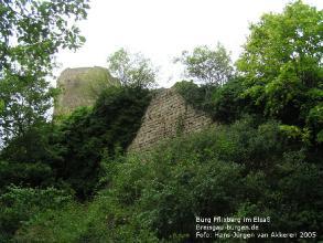Burgen im Elsaß