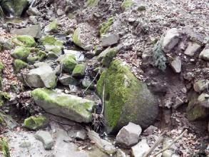 Exkursion im Schatten der Burg Kuernberg am 15.03.2015-22