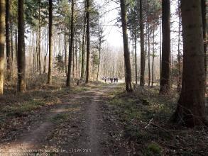 Exkursion im Schatten der Burg Kuernberg am 15.03.2015-68
