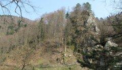 Burg Falkenstein im Höllental