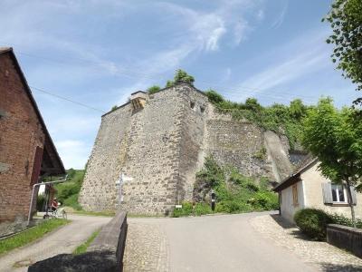 Schloss_Burkheim_Suedwestseite_Schildmauer