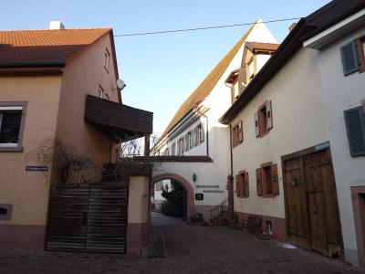 Stadt Kenzingen_5